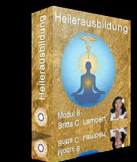 intuitive heilerausbildung modul 8 cover